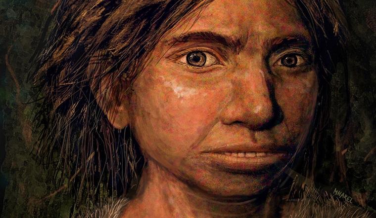 Denisovan Reconstucted