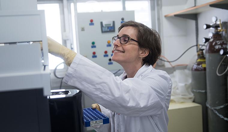 Dr. Tamar Avin-Wittenberg