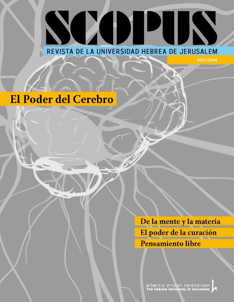 Scopus 2013 (Spanish)